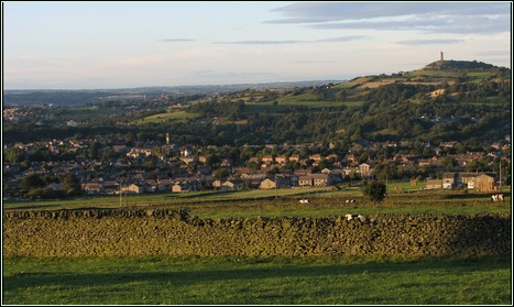 Overview of Honley