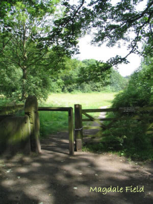Image Gate entrance to Magdale Fields